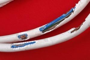 Defekte Stromkabel als Gefahrenquelle für Ihren Hund!