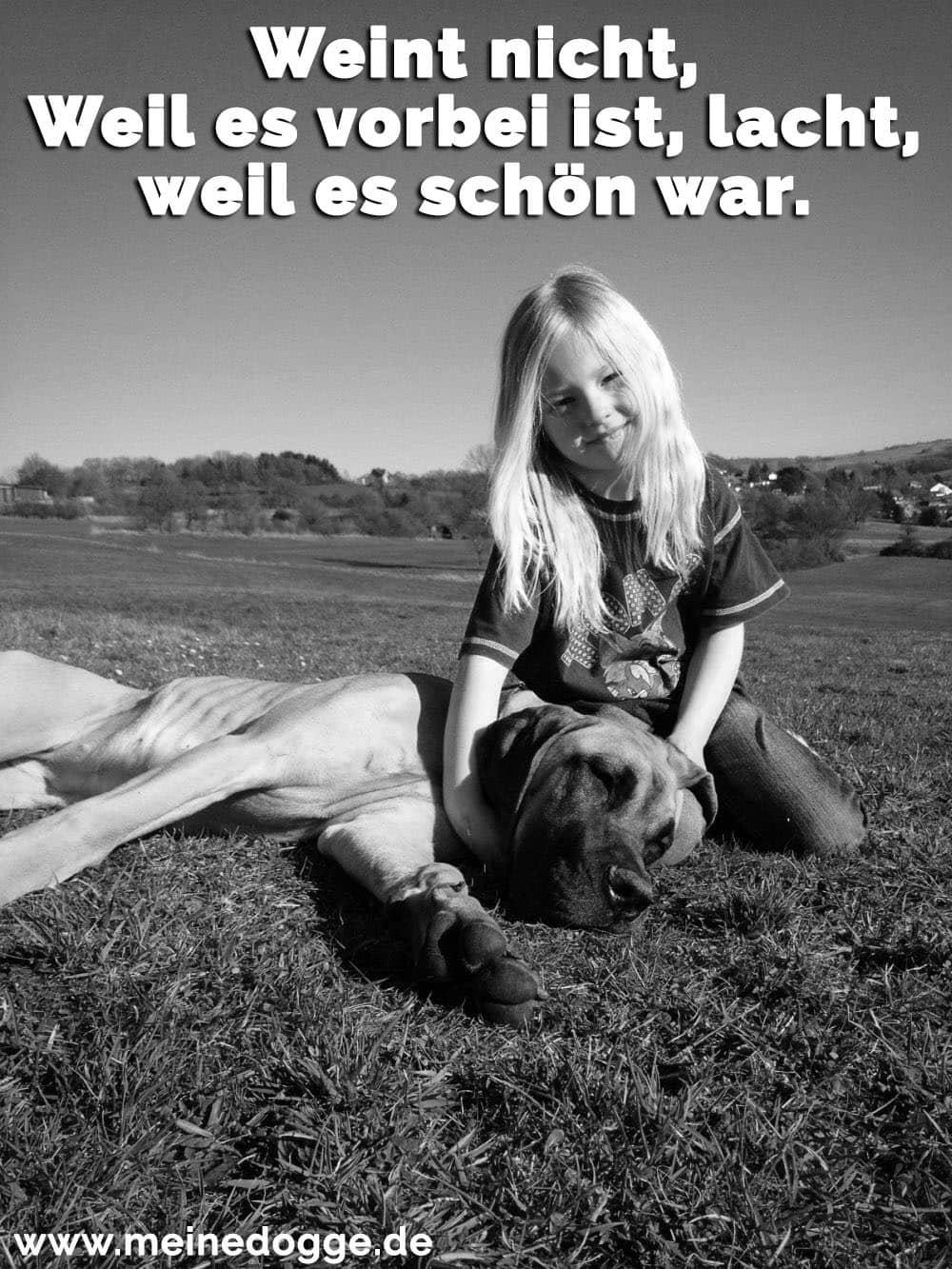 Ein Mädchen streichelt ihre Dogge