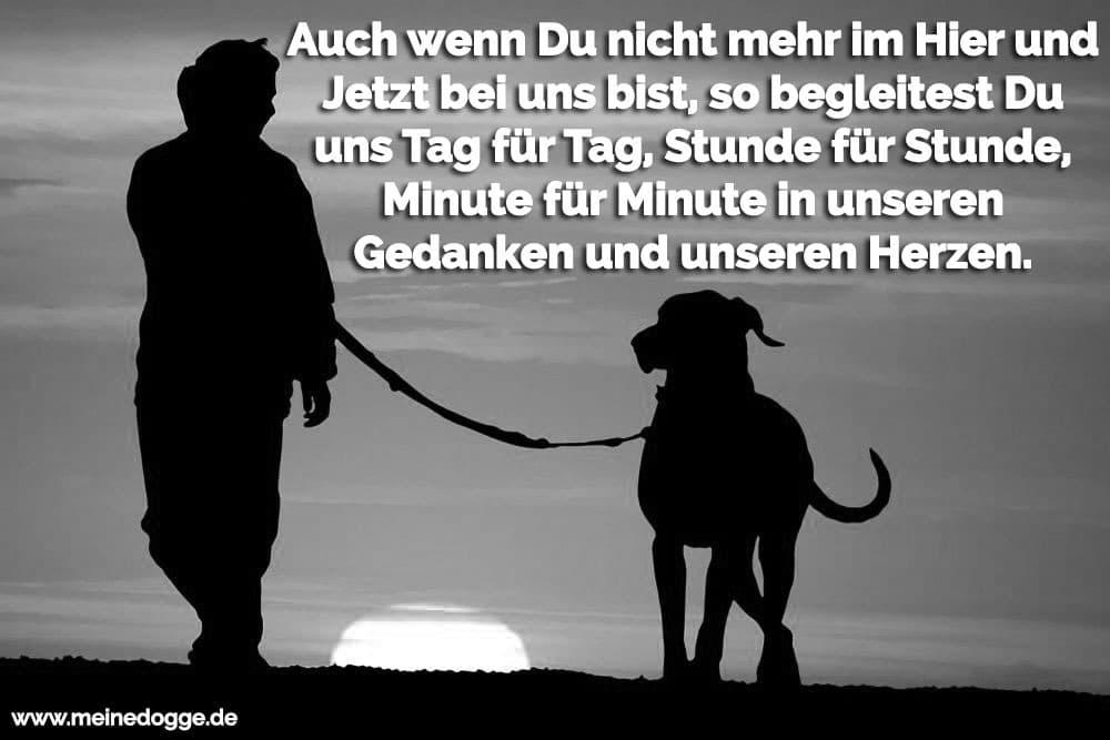 Ein Mann geht mit seine Dogge