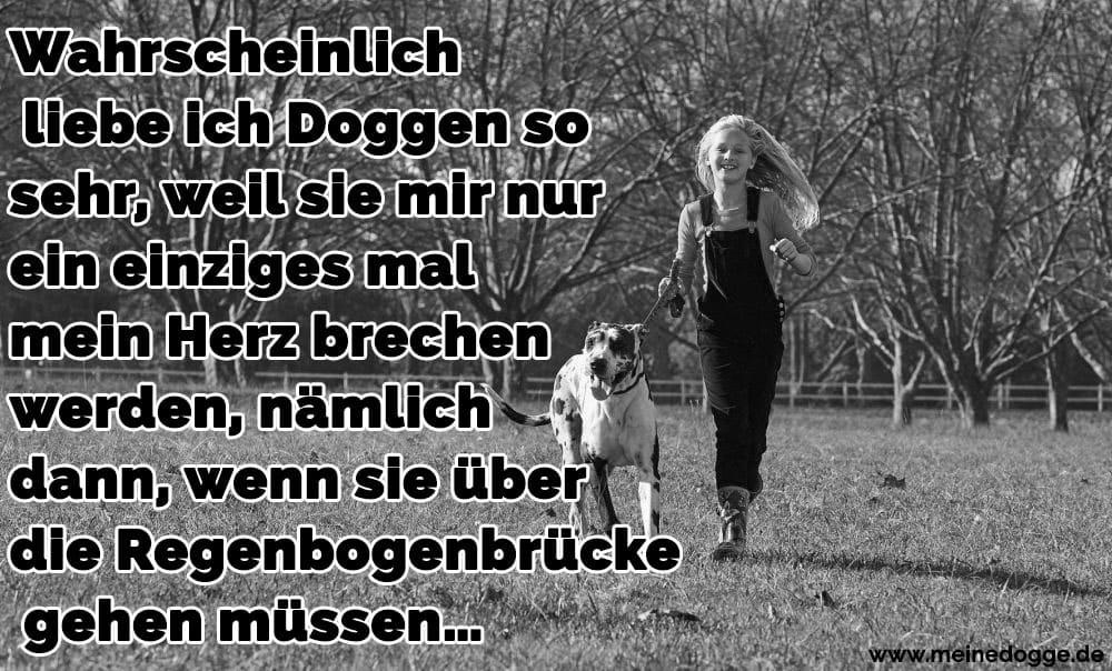 Ein Mädchen rennt mit ihre Dogge