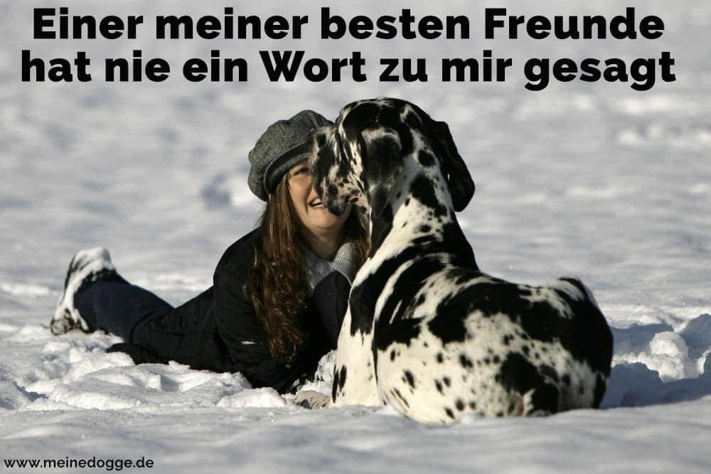 Eine Frau und ihr Dogge im Schnee