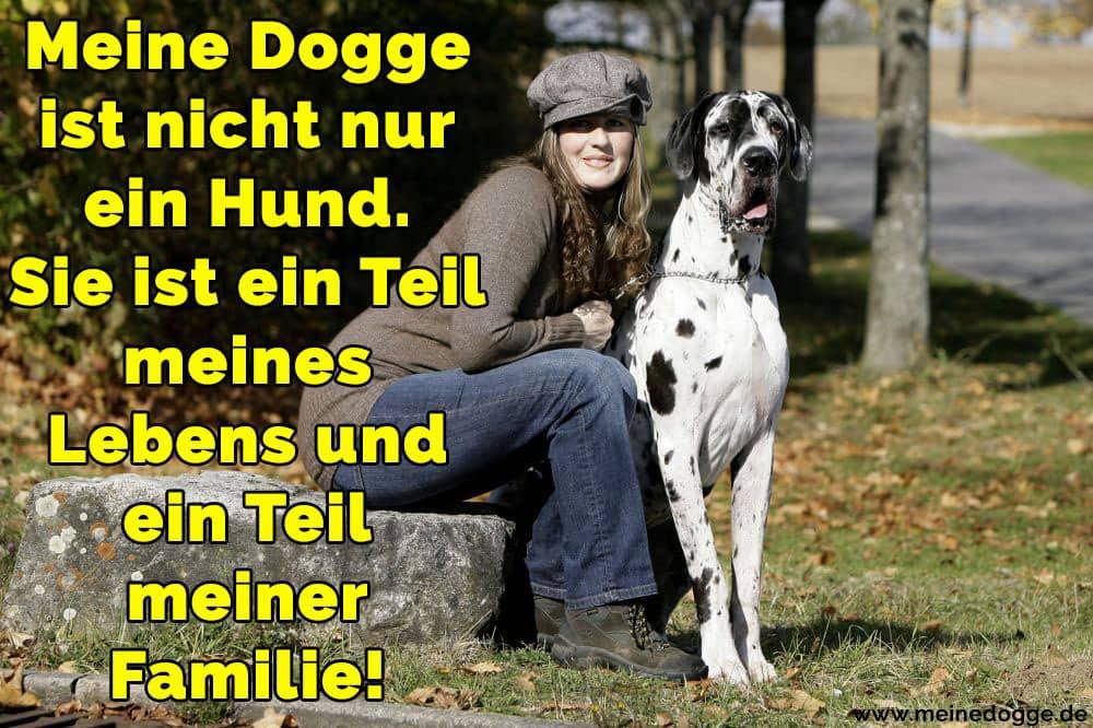 Eine Frau und ihr Dogge im Park