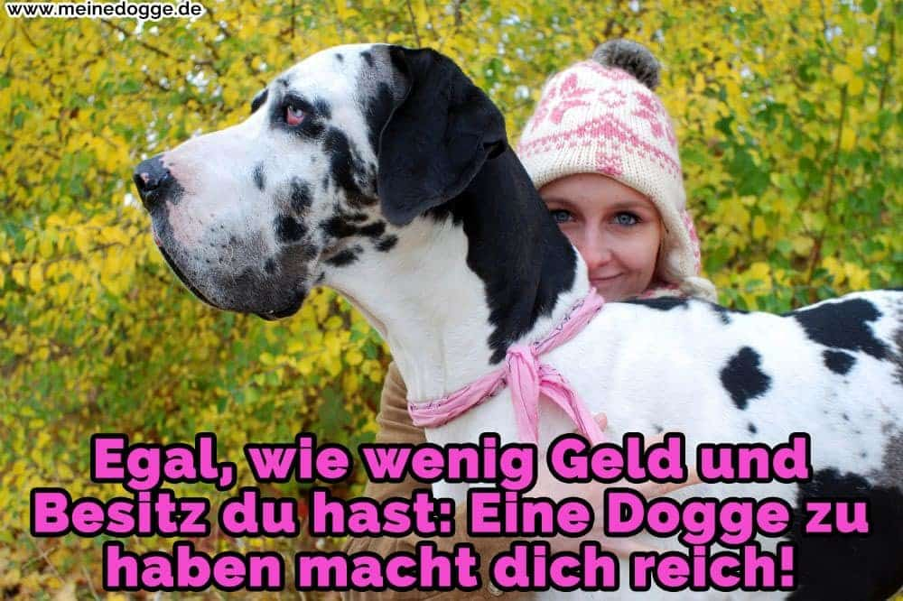 Eine Frau umarmt ihr Dogge
