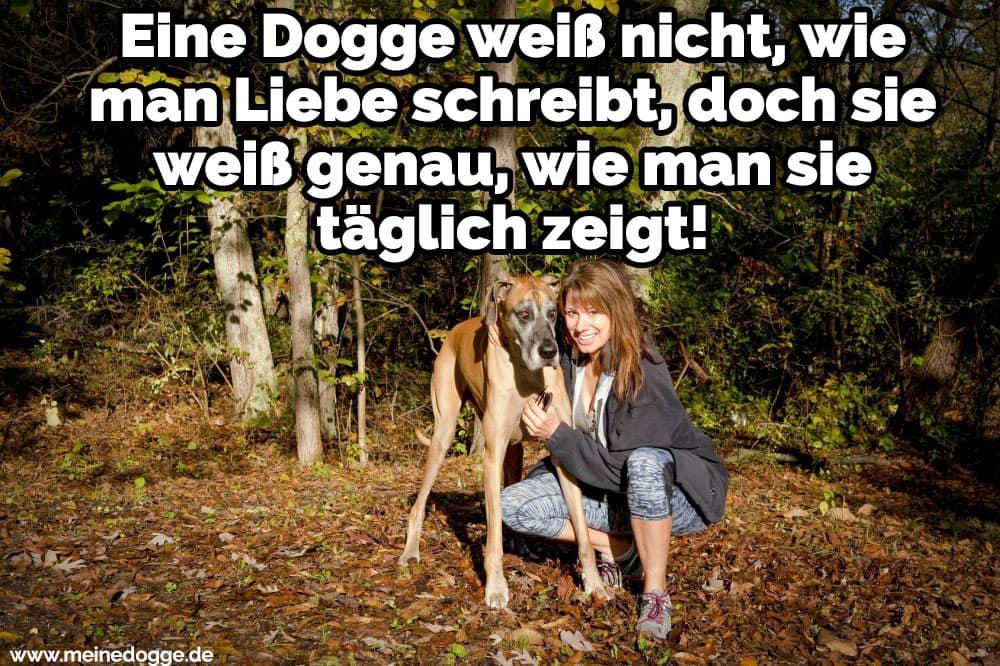Eine Frau umarmt ihre Dogge