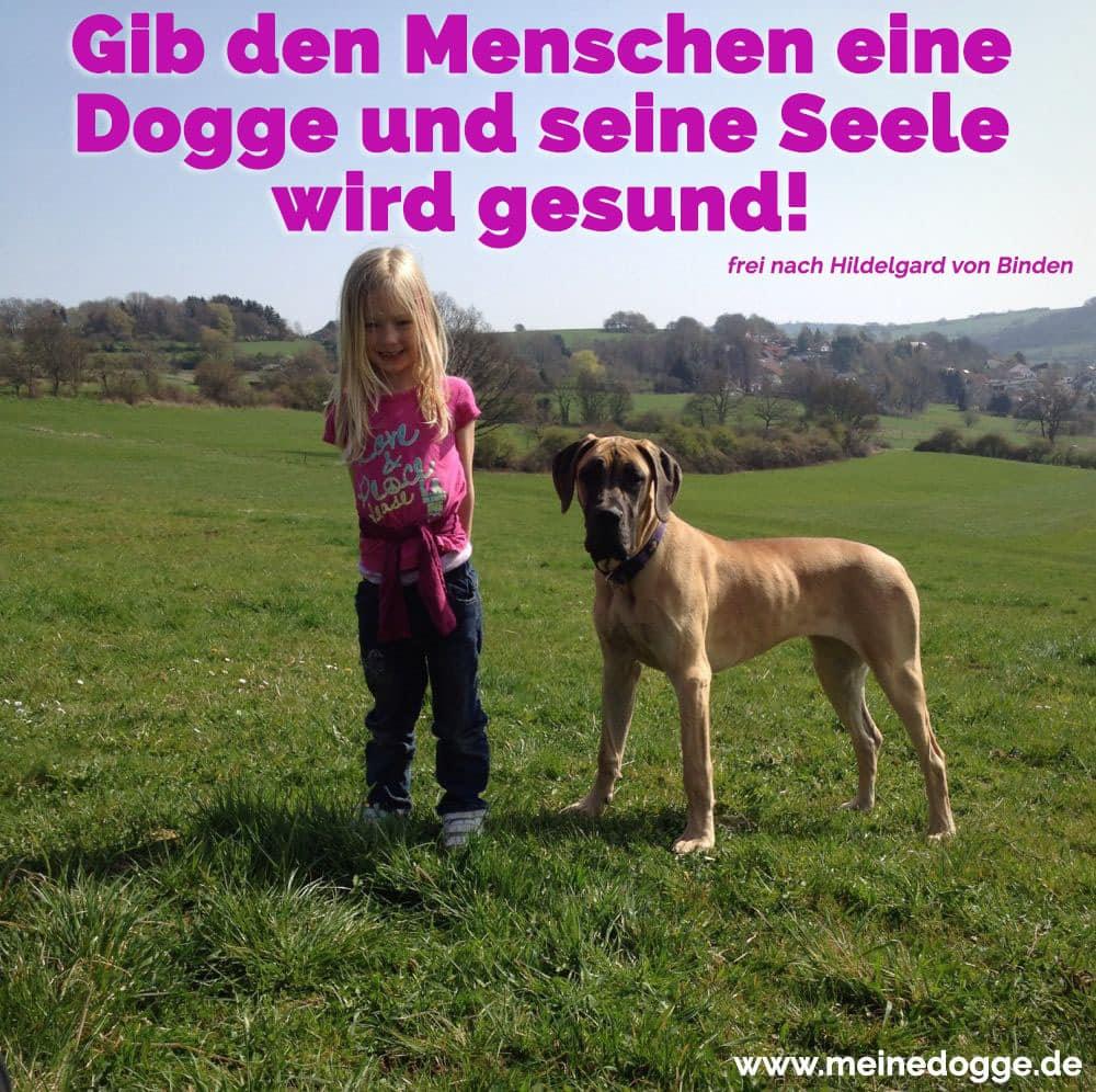 Ein Mädchen mit ihre Dogge im Gras