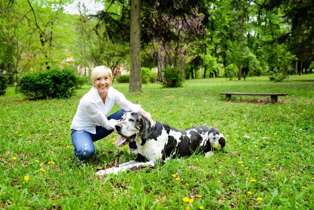 Blonde Frau mit Dogge auf Wiese